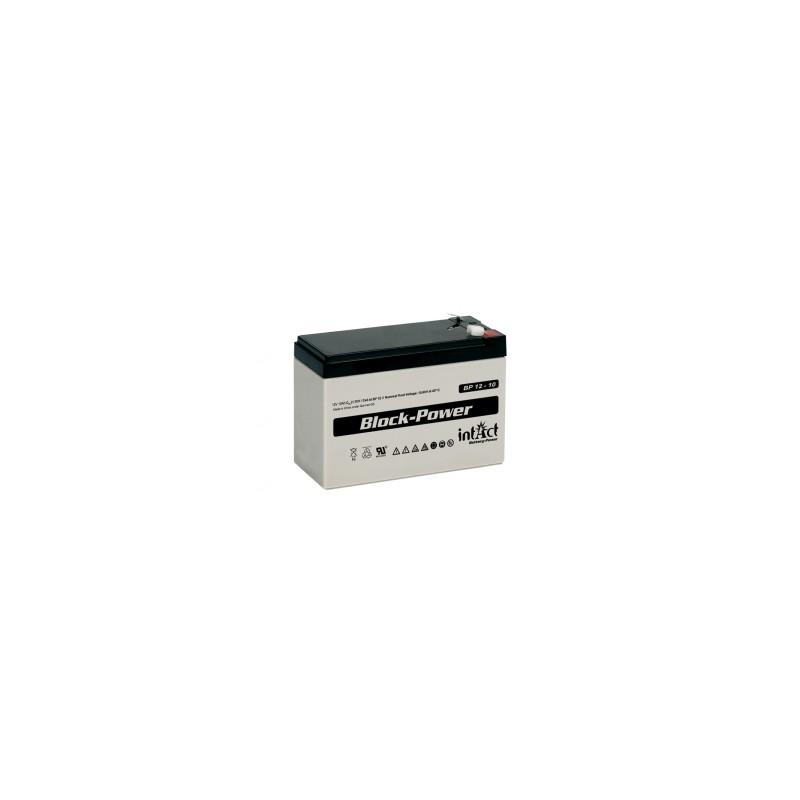 IntAct BP12-10 12V 10Ah AGM VRLA akumuliatorius