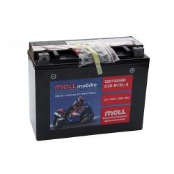 MOLL 52012 AGM (C50-N18L-A) 20Ah akumuliatorius