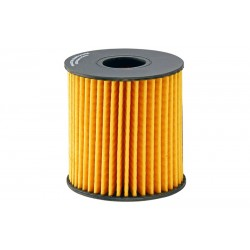 Alyvos filtras FRAM CH10066