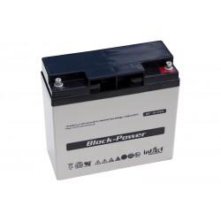 IntAct BP12-24N 12V 24Ah AGM VRLA akumuliatorius