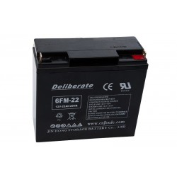BAT 6FM22 12V 22Ah AGM VRLA battery