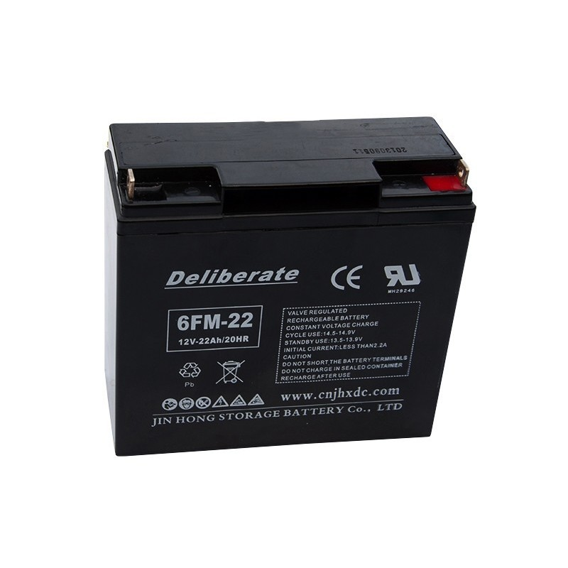 BAT 6FM22 12V 22Ah AGM VRLA battery