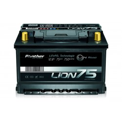 IPANTHER Lion75 12.8V 75Ah 960Wh Lithium Ion DC battery