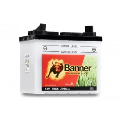 Banner 30Ah 300A Garden Bull akumuliatorius 12V 187x128x165mm