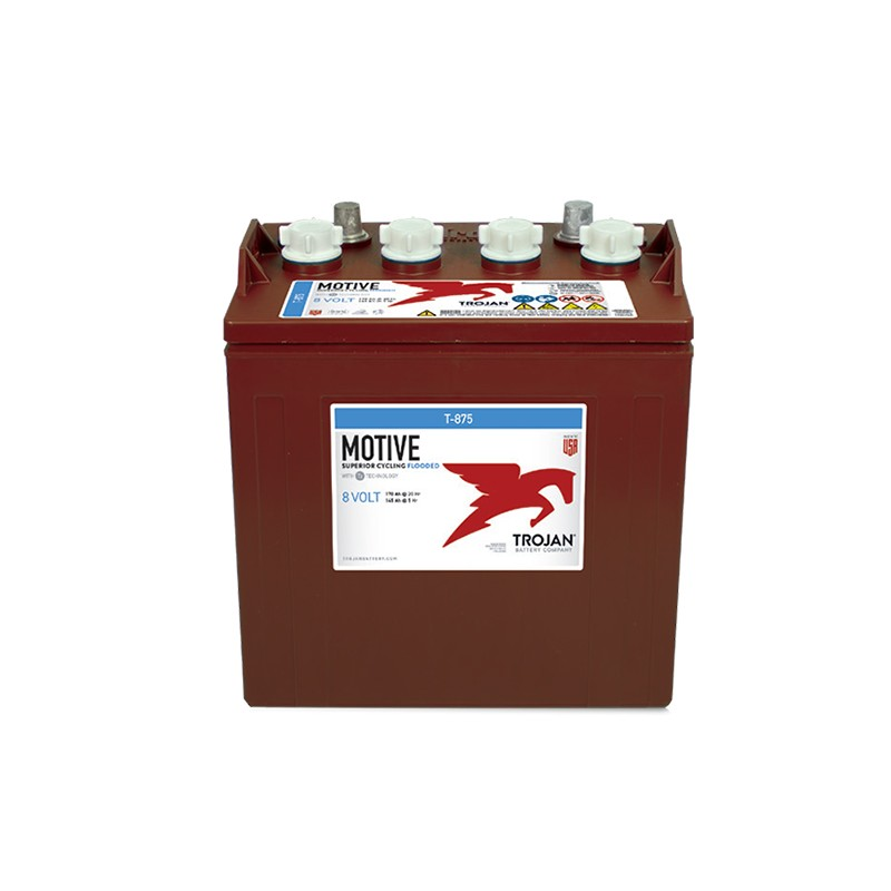 TROJAN T875 170Ah deep cycle battery
