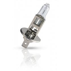 Halogen bulb PHILIPS 12258PR H1 PREMIUM (1 pcs.)