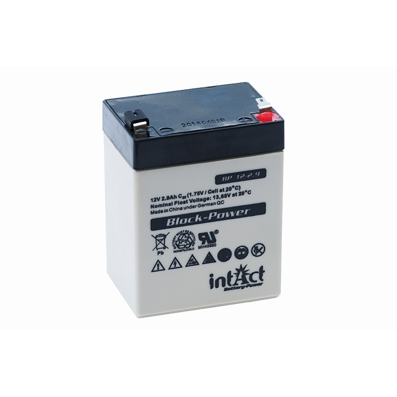 IntAct BP12-2.9 12V 2.9Ah AGM VRLA battery