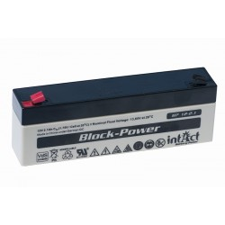 IntAct BP12-2.1 12V 2.1Ah AGM VRLA battery